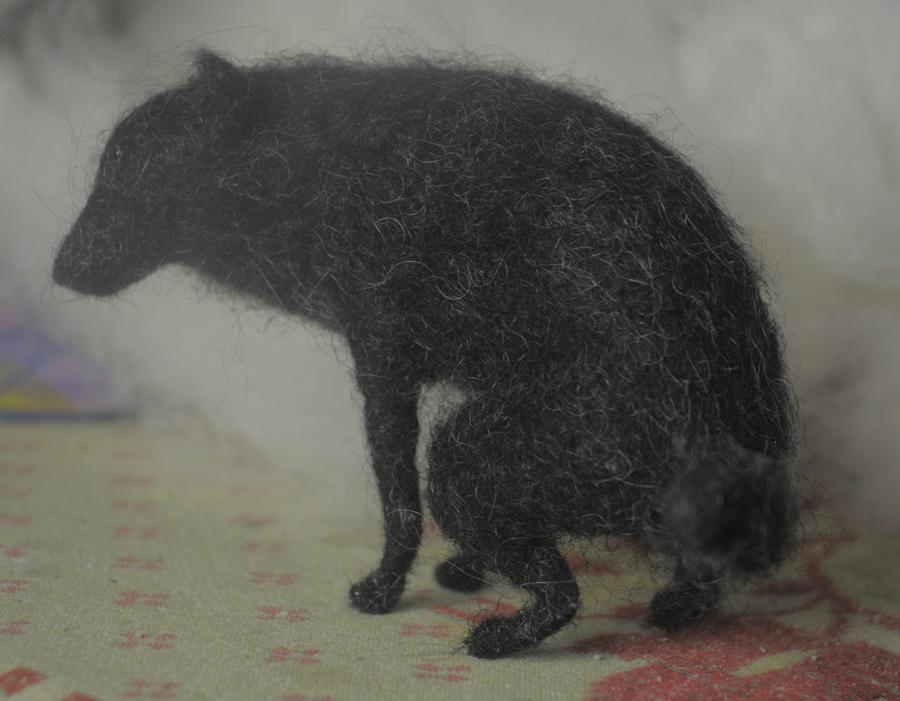 pooping dog